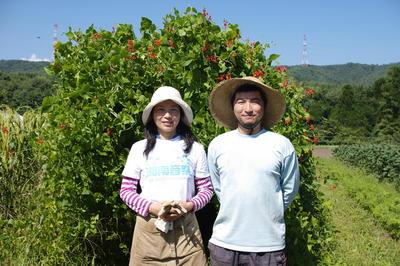 50種類の有機野菜を栽培する農家に